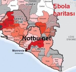 Ebola haritası