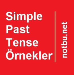Simple past tense örnekler