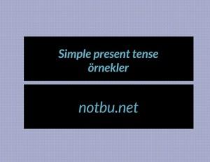Simple present tense örnekler