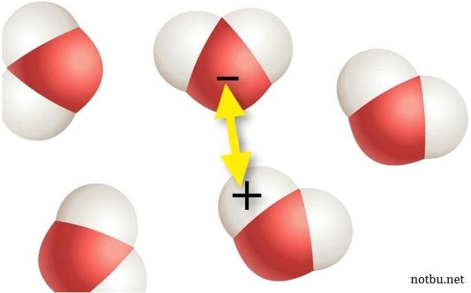 Hidrojen bağı nedir