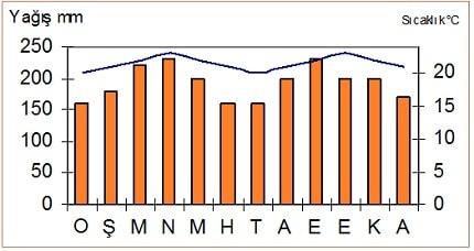 ekvatoral iklim grafiği