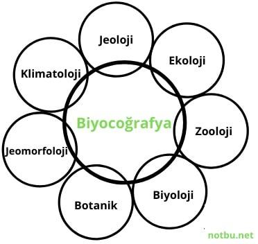 biyocoğrafya nedir