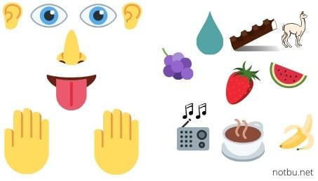 Maddelerin beş duyu organımızla algıladığımız özellikleri