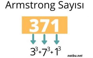Armstrong sayısı