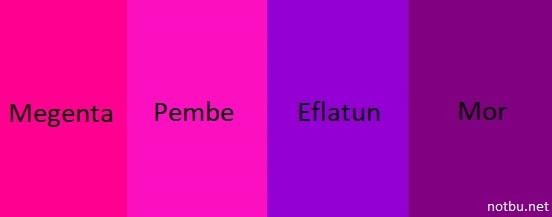 Mor hangi renklerden oluşur