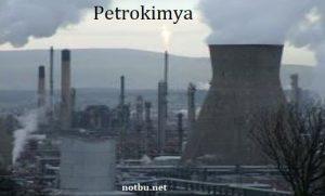 Petrokimya nedir