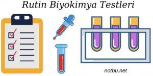 Rutin biyokimya testleri